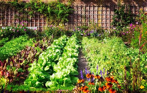 How To Plan A Pretty And Productive Vegetable Garden How To Plan A Vegetable Garden
