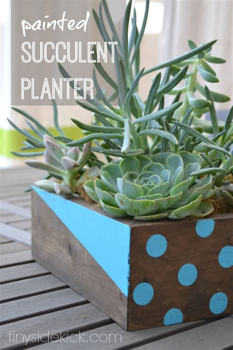 Painted Planters by Painted Succulent Planter