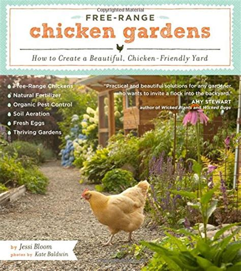 having chickens in your backyard top 10 breeds for raising backyard chickens