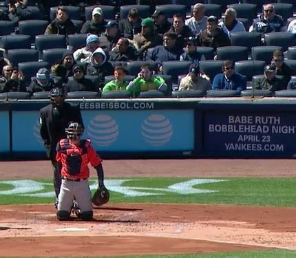 mutant turtles home plate at yankees