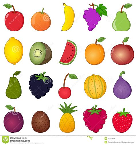 colorful fruits collection style stock vector