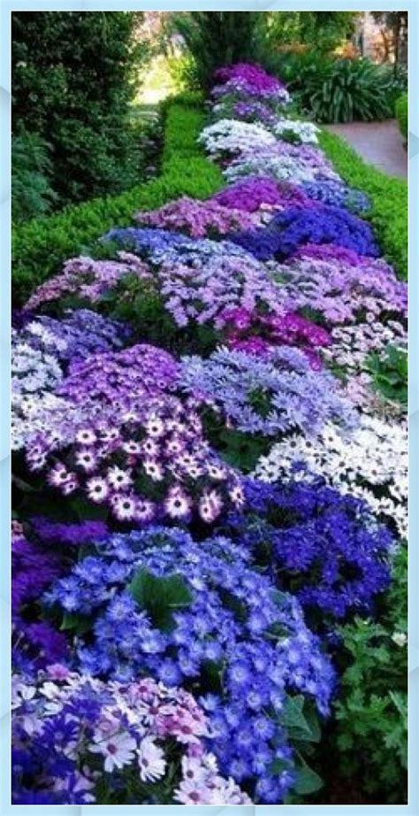 maintenance perennials garden planters