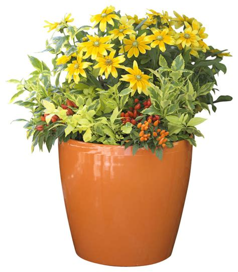 modern indoor planters self watering indoor planters easy roller self watering pot orange large