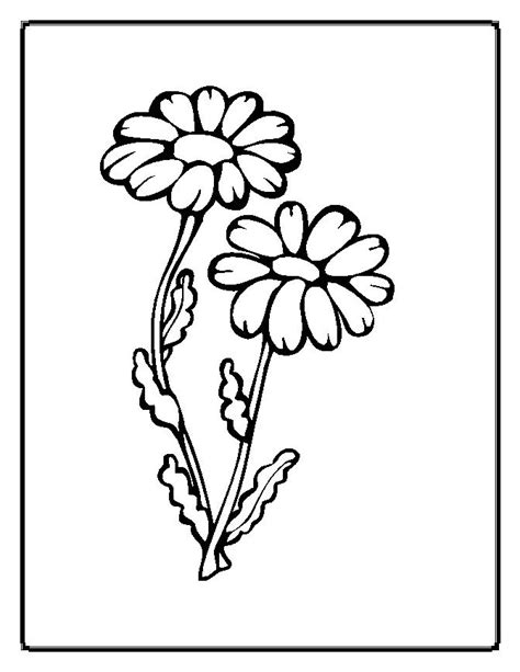 flowers coloring page flower coloring pages 2 coloring pages to print