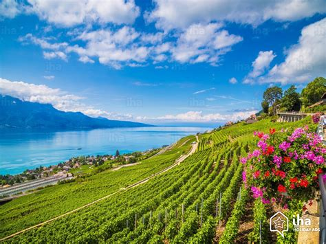 lausanne rentals   vacations  iha direct