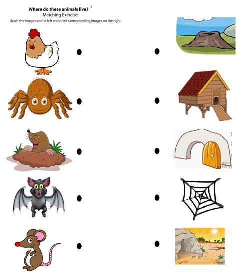 coloring pages of animals and their homes coloring pages animals and their homes new free printable