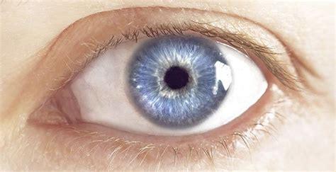 imagenes ojos pardos cient 237 ficos afirman que el color de tus ojos dice mucho de