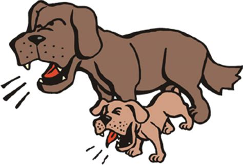 how do you a not to bark how do i stop a from barking