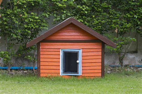 How To Build A Dog House Or Dog Kennel