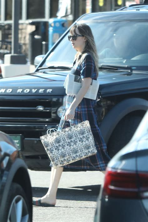 malls in malibu dakota johnson at the pavillions mall in malibu
