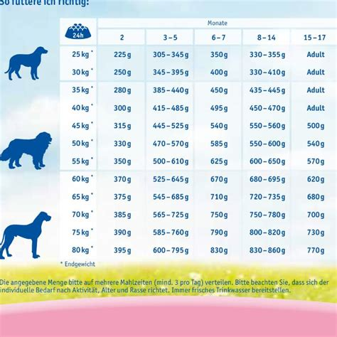 wann ist fastenzeit wie viel futter bekommt ein welpe hund haustiere welpen