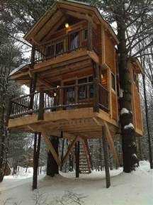 treehouse cabin you can stay in at moose meadow lodge
