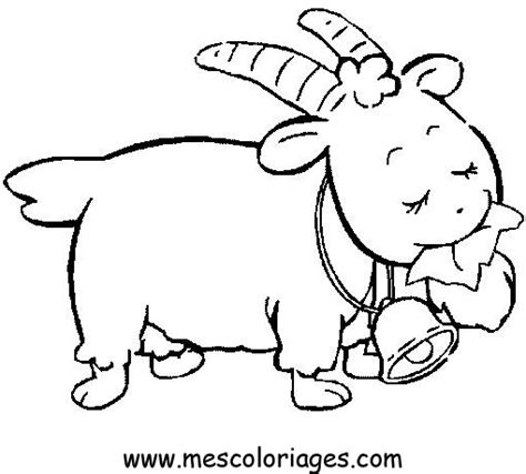 sheep pen coloring page coloring pages of lambs best coloring pages collections