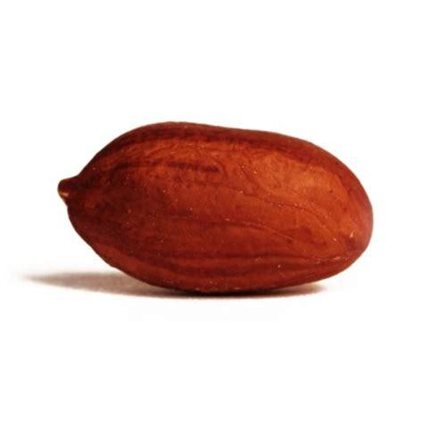 raw shelled peanuts buy raw peanuts peanut recipes