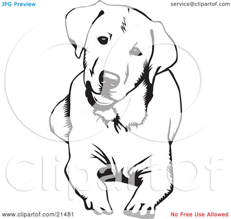 coloring pages of black lab puppies labrador retriever clipart therapy dog pencil and in