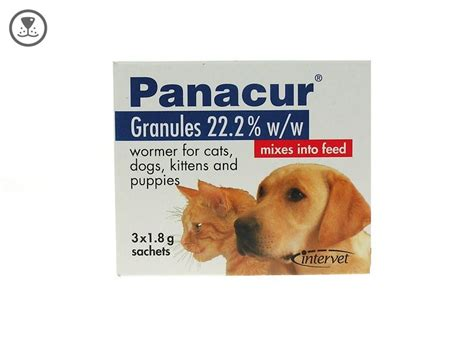 fenbendazole for dogs panacur granules cat 22