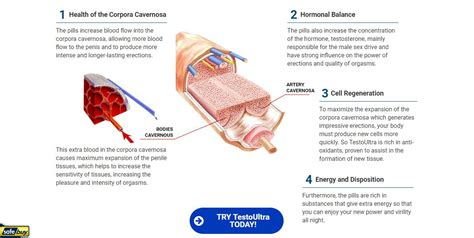 help the testo testo ultra warning must read shocking facts about this