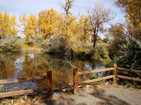cherry creek community garden southern exposure panoramio photo of pond at cherry creek state park
