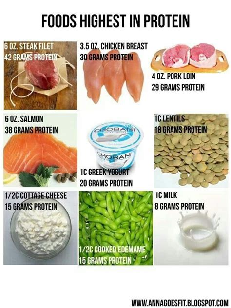 protein high foods high protein food that are high in protein