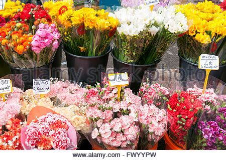 Flower Tubs For Sale Cut Flowers For Sale Flower Market Mong Kok Hong Kong