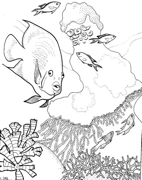 coral reef and fish coloring page 30569 bestofcoloring com
