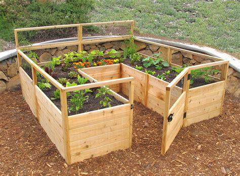 raised garden beds ideas  growing images