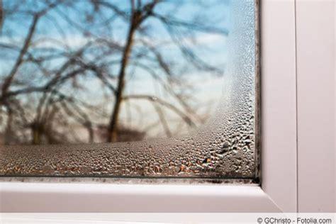 Schimmel Am Fenster Silikon by Schimmel An Silikon Fensterfugen Und Fensterdichtung