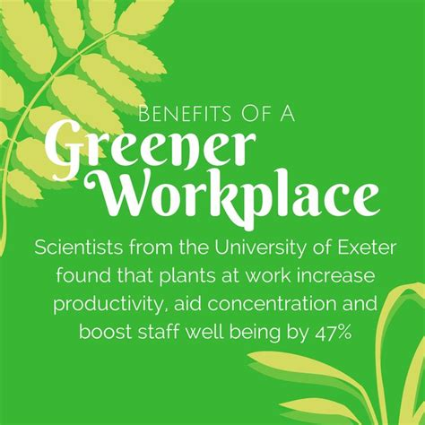 benefits of houseplants 17 best images about benefits of a greener workplace on