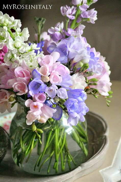 immagini fiori primavera my roseinitaly delicati fiori di primavera