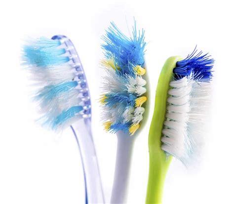 season  toothbrush