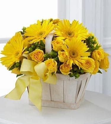 linguaggio dei fiori gerbera significato fiori gerbere bianche 1 fiore significato