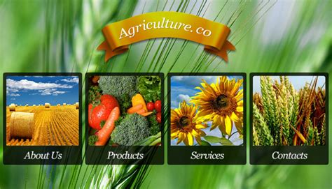 agriculture themes html 35 html responsive agriculture website templates