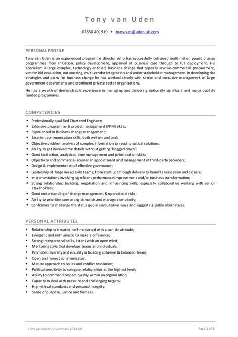 Example Of A Summary For A Resume by Tony Van Uden Cv Summary 2013 08