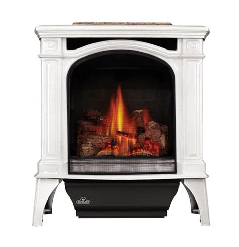 direct vent gas stove fireplace napoleon gas stove bayfield direct vent gas stove the