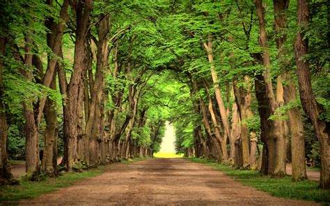 country roads wallpaper  images