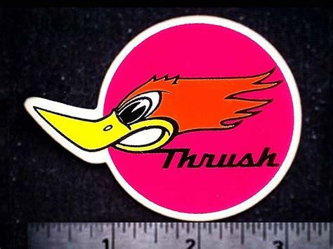 Racing Duck Sticker by World Of Miniature Bears Rabbit 5 Quot Mini Mohair Bunny