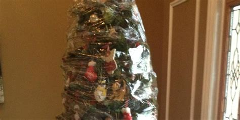this is how you take down a christmas tree picture