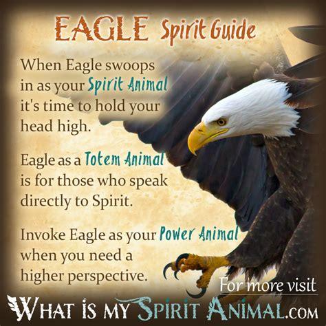 eagle symbolism meaning power animal spirit animal