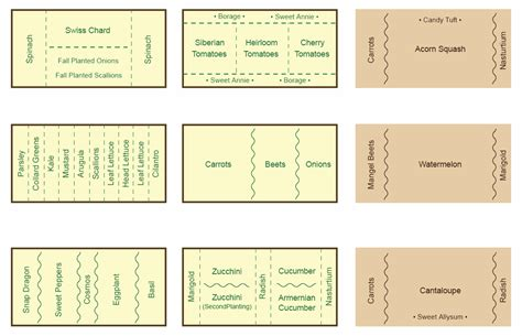companion vegetable garden layout companion planting with eggplants garden guides invitations ideas