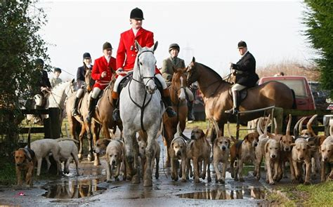 christopher russell scottish government foxhunting ban would my mp vote to repeal it telegraph