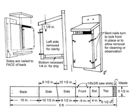 Eastern Bluebird House Plans Free Peterson Bluebird House Plans Patterns