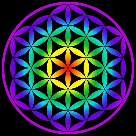 figuras geometricas sagradas drunvalo melchizedek la flor de la vida geometr 237 a sagrada