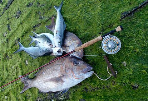 handy hacks  fishing diy nz fishing world