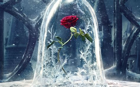 beauty and the beast beauty and the beast 2017 wallpapers hd wallpapers id
