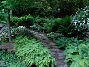 32 curated woodland garden ideas by aimee7494 gardens