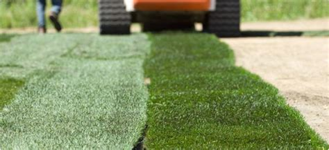 how much does it cost to sod a backyard sod installation cost redbeacon