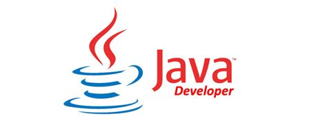 how to hire the best java developers vizteams