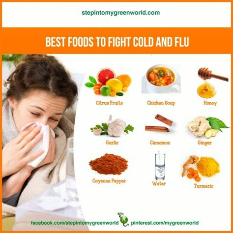8 Tips To Fight A Cold by 1000 Images About Flu Fighting Foods On