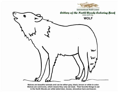 wolf coloring book coloring book international wolf center