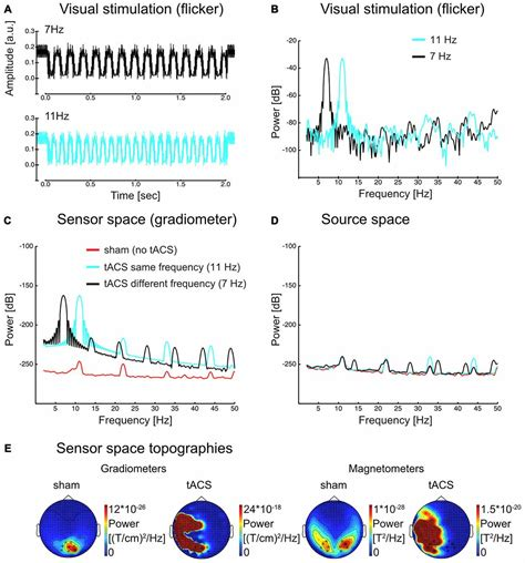 diode frequency data frontiers flicker driven responses in visual cortex change during matched frequency